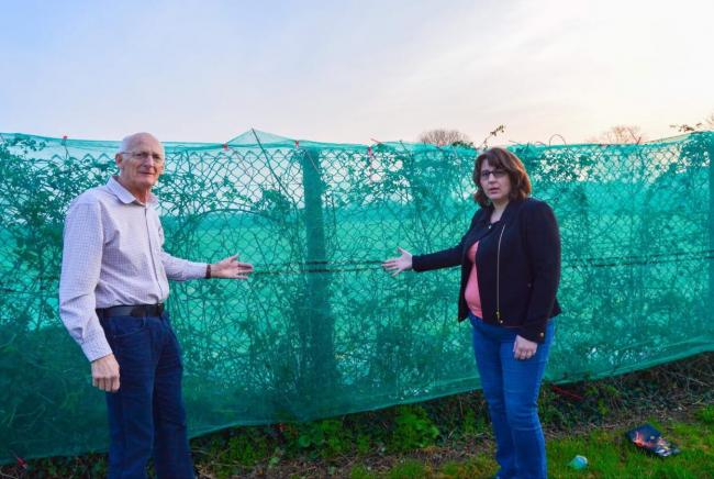 Further calls for anti-bird netting to be removed