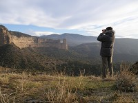 Birding abroad Finding Wallcreepers in the Sierra de Guara
