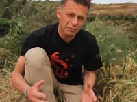 Massacre on Migration Chris Packham in Malta, episodes one and two