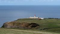 Birding abroad Azores high