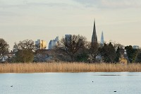 Articles Woodberry Wetlands - London's newest nature reserve
