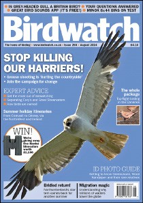 Birdwatch August 2014