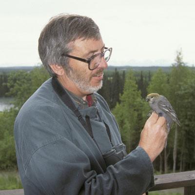 The author with a juvenile Pine Grosbeak (photo: David Hosking)