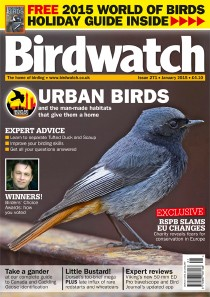 Birdwatch January issue