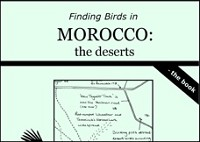 Finding Birds in Morocco: the deserts - the book and Finding Birds in Morocco: the deserts - the DVD by Dave Gosney