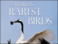 The World's Rarest Birds by Erik Hirschfeld, Andy Swash and Robert Still