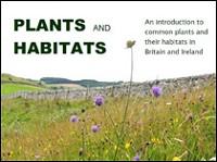 Plants and Habitats by Ben Averis