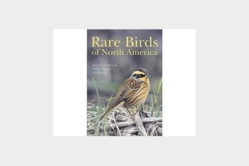 Rare Birds of North America by Howell, Russell & Lewington