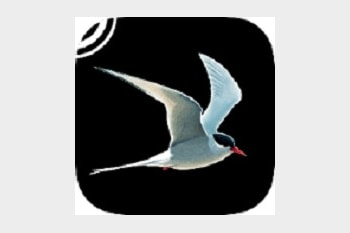 Collins Bird Guide app for iPhone and iPad