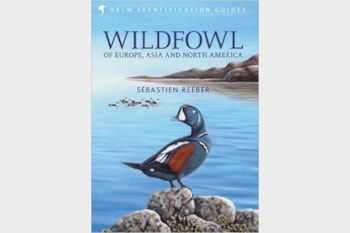 Wildfowl of Europe, Asia and North America by Sébastien Reeber