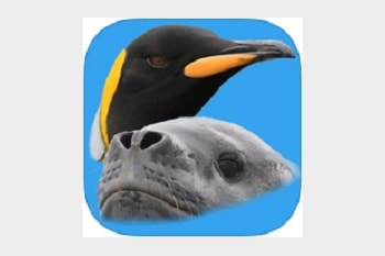 Antarctic Wildlife Guide app