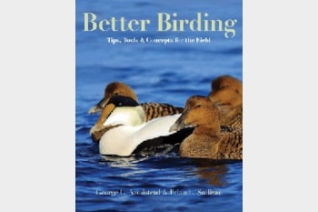 Better Birding: Tips, Tools and Concepts for the Field
