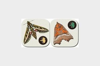 Moth guides go digital