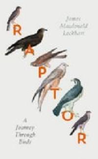 Raptor: a Journey Through Birds by James Macdonald Lockhart
