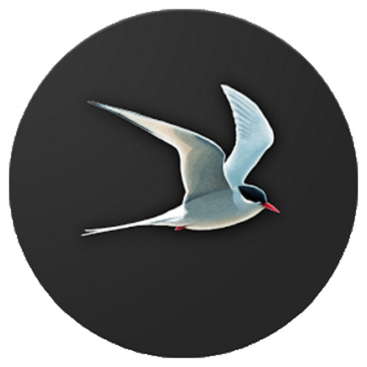 Collins Bird Guide app for Android