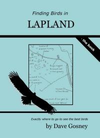 Finding Birds in Lapland