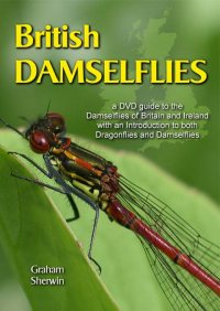 British Damselflies