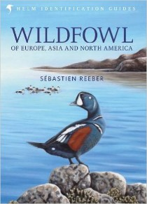 Birdwatchers Guide to Portugal