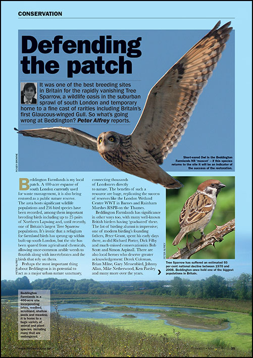 Defending the patch - the fight to save Beddington Farmlands