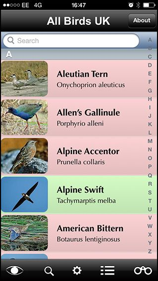 All Birds UK app.