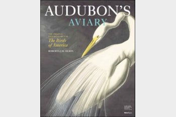 Audubon's Aviary: the Original Watercolours for The Birds of America.