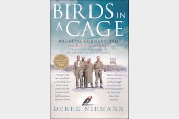 Birds in a Cage by Derek Niemann.