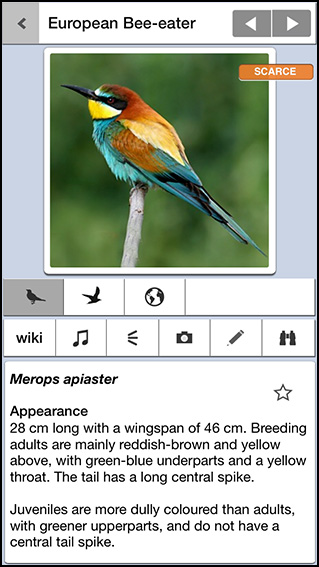 Birds of Britain Pro app 2