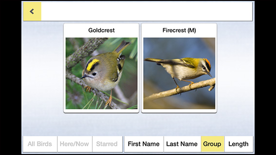 Birds of Britain Pro app 3