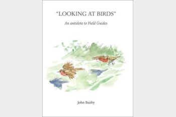 Looking at Birds by John Busby