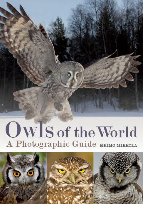 Owls of the World: A Photographic Guide