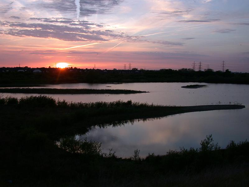 Beddington Farmlands