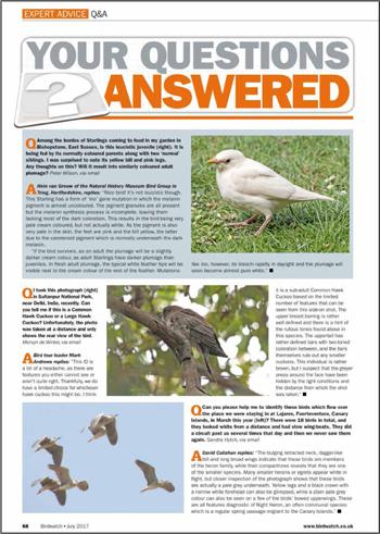 Contact Birdwatch - BirdGuides