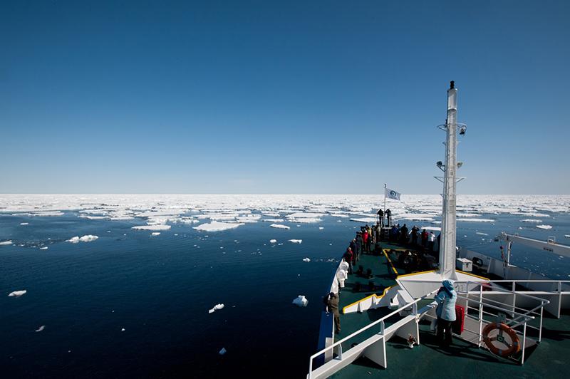 Shelf ice between Jan Mayen and Spitsbergen. Photo: Birding Breaks.