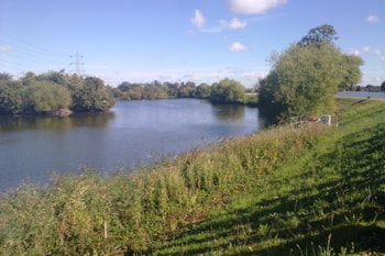 The reservoirs at Walthamstow Wetlands provide vital support for wintering birds. Photo by Tony Waldron (commons.wikimedia.org).