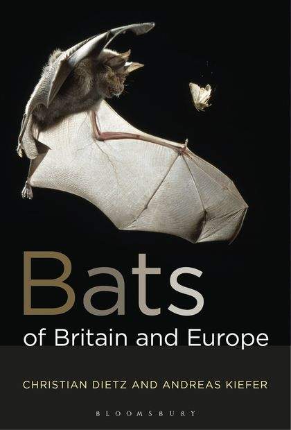 Bats of Britain and Europe 206