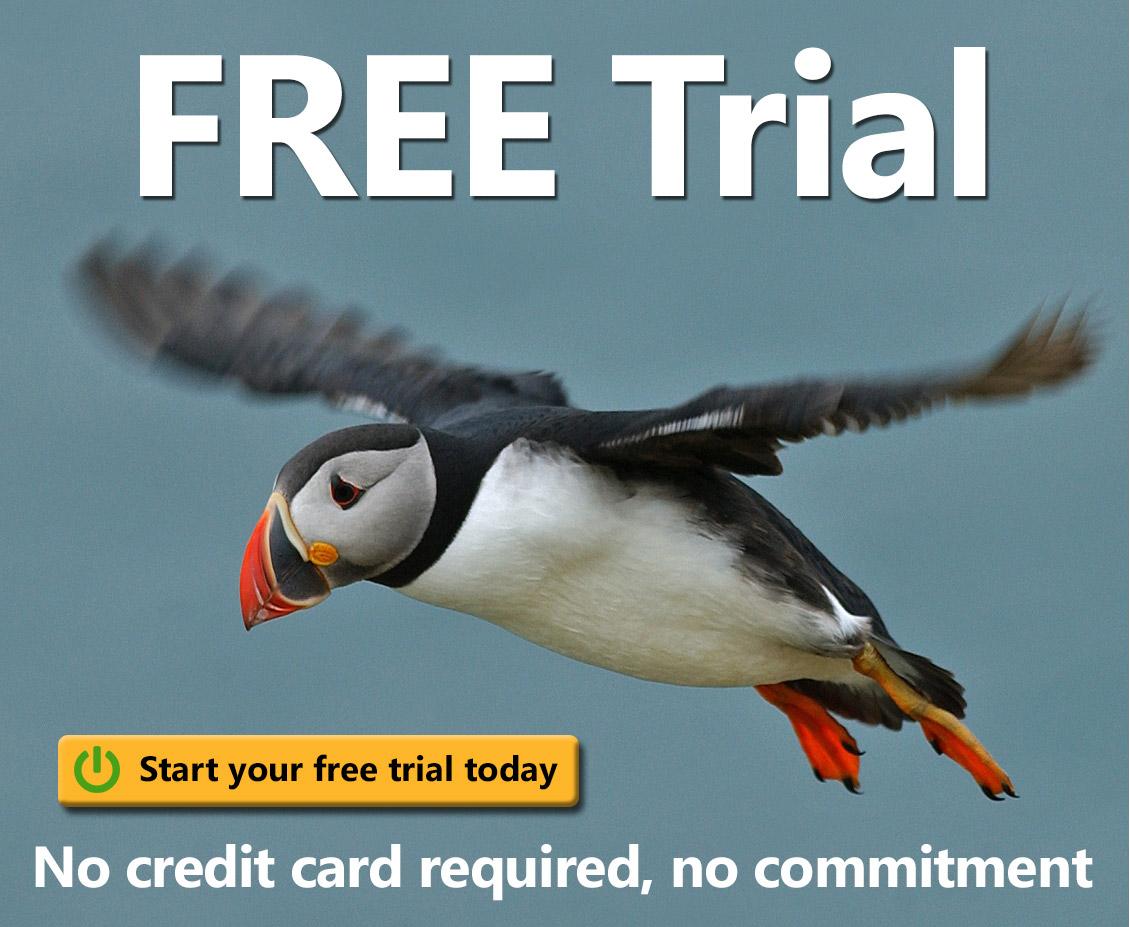 free rare bird alerts