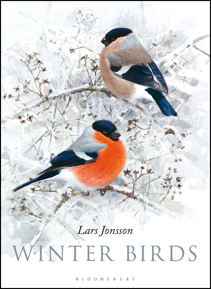 Winter Birds by LarsJonsson