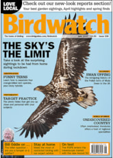 Birdwatch June Cover