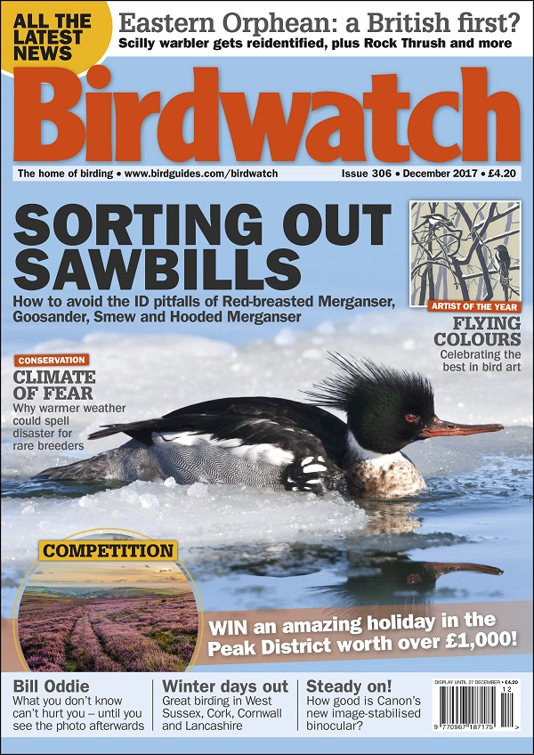 Birdwatch December 2017