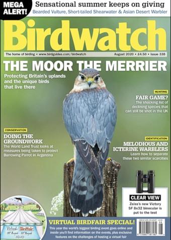 Birdwatch August Cover