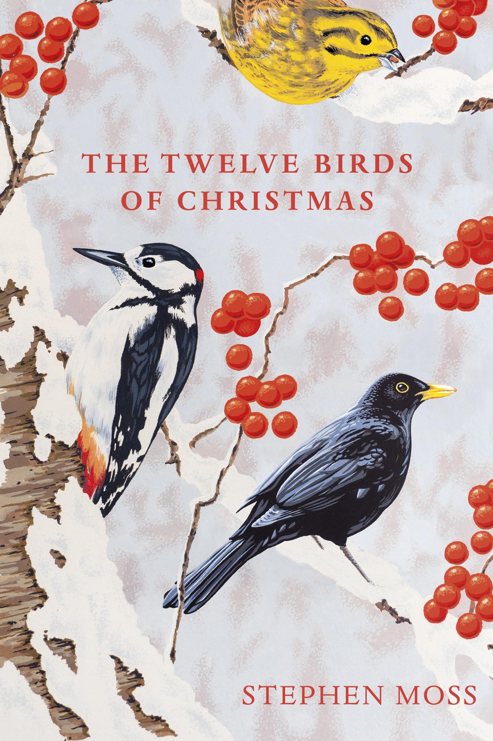 The Twelve Birds of Christmas - BirdGuides