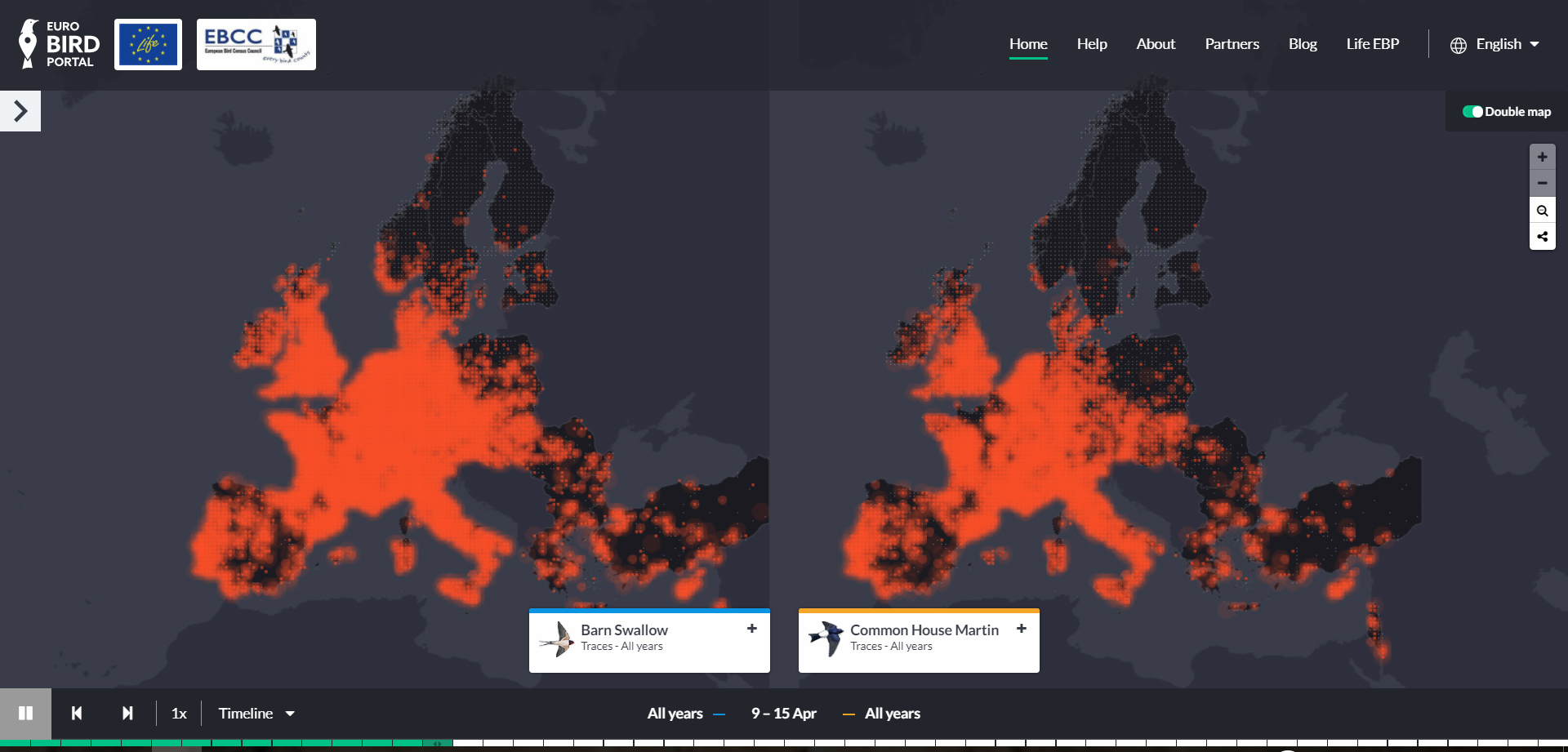 Animated maps show bird migration as never before - BirdGuides