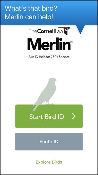 Merlin Bird ID app screen shot 1