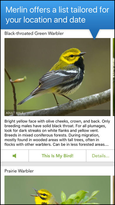 Merlin Bird ID app screen shot 4