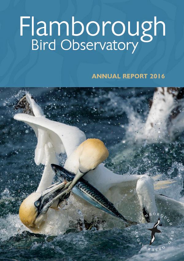 Flamborough Bird Observatory Annual Report 2016