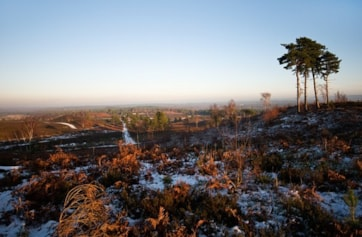 View from Crown Prince Hill, looking over Pirbright Common. Nikon D300 & Sigma 10-20mm @ 17mm.