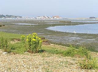 Looking across Christchurch harbour to Mudeford