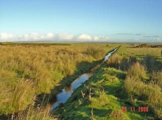 A general view of the central area of Northam Burrows C.P. Image taken with a Sony DSCP10 digital camera.