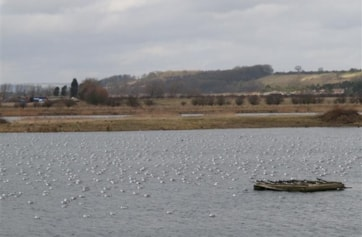 Part of the Main Lake.