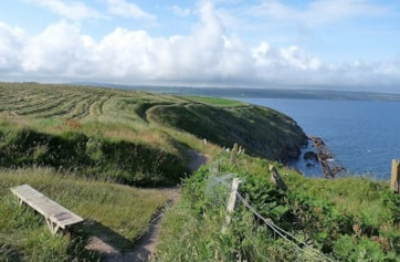 The Cliff Walk, looking towards Ardmore Head.{The two headlands virtually run into each other}.